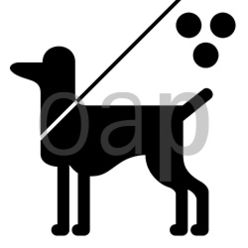 Blindenhund erlaubt